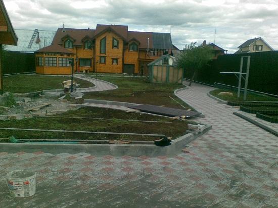 Фото Ромашка восточная во дворе