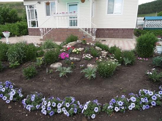 Фото цветы рядом домом