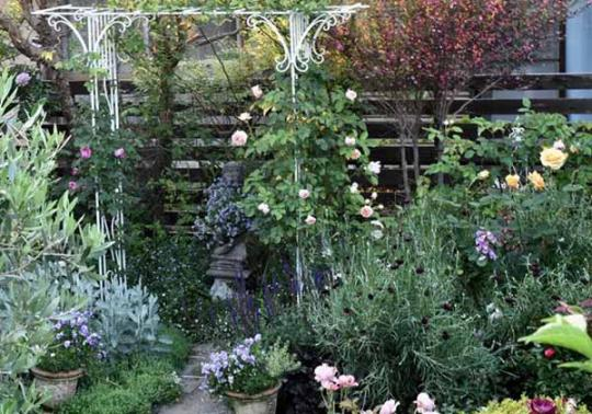 Красивый двор частного дома хитрости планировки и дизайна