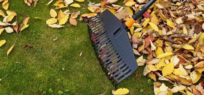 Уборка скошенной травы и листвы на газоне