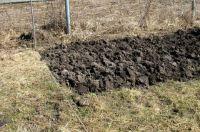 Генеральная уборка. Как обработать почву перед зимой