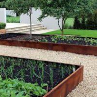 Какие овощи лучше выращивать на одной грядке?